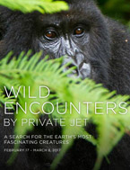 Wildlife Encounters by Private Jet